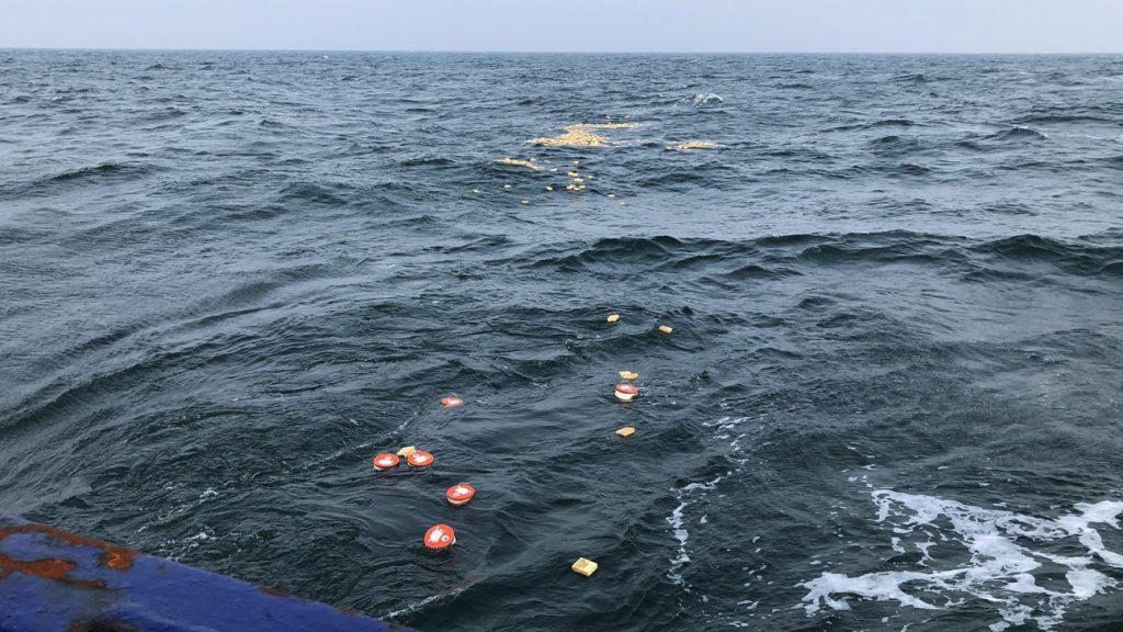Bild Drifter im Meer